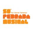 14/05/2015: 9 anos de Só Pedrada Musical