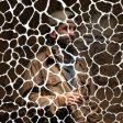O produtor Samiyan faz sua estréia pelo selo Stones Throw. Confira!